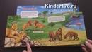 Говорящая книжка Чей дом саванна и пустыня Рассказы о животных Азбукварик. Видео-обзор