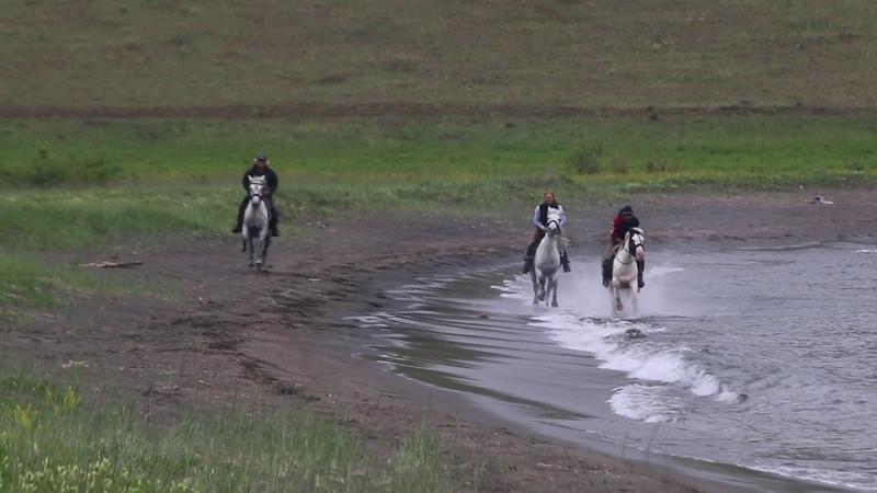 Галоп по полосе прибоя озеро Байкал конные туры
