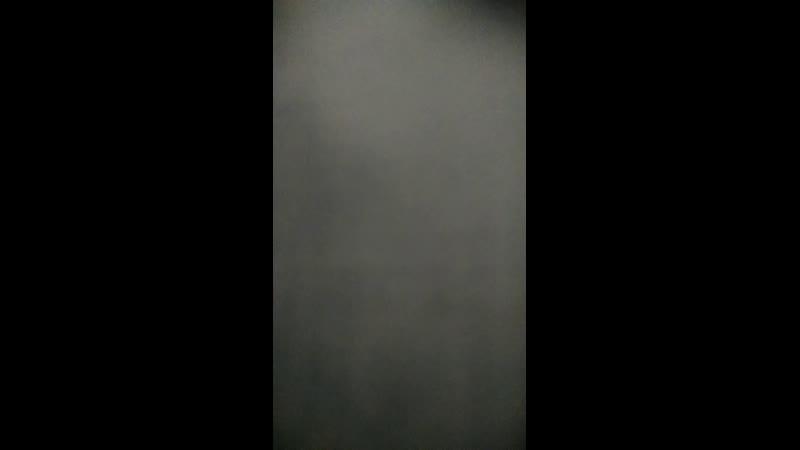 Live: Студия исторического танца Белая лилия