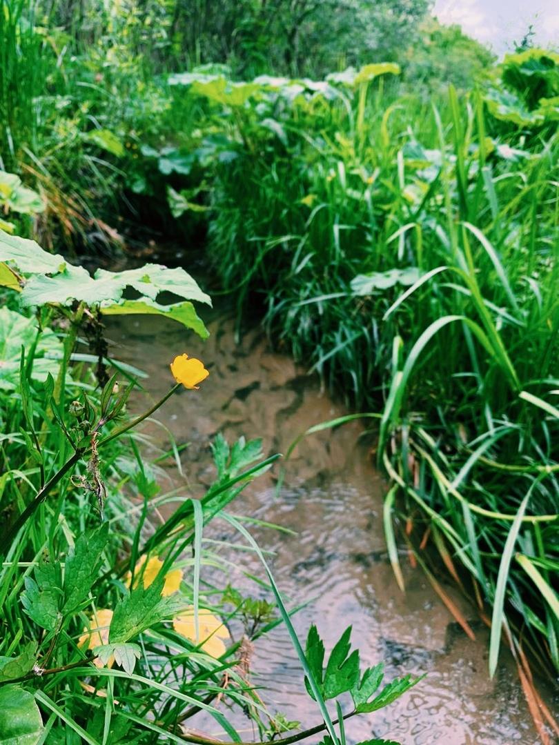 Маленькая история большого события «Муромский водопровод», изображение №9