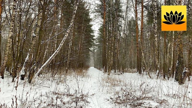 Падающий снег Нежная Романтическая Музыка Для Души и Сердца
