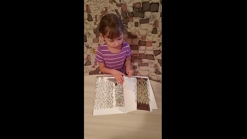 Юля читает на англ. 5лет 3 мес.