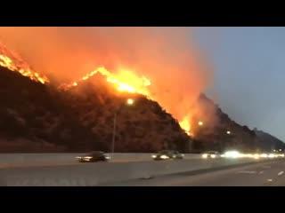 Терминатор бежит от огня первым: пожары оставляют за собой в Калифорнии кинопепелище