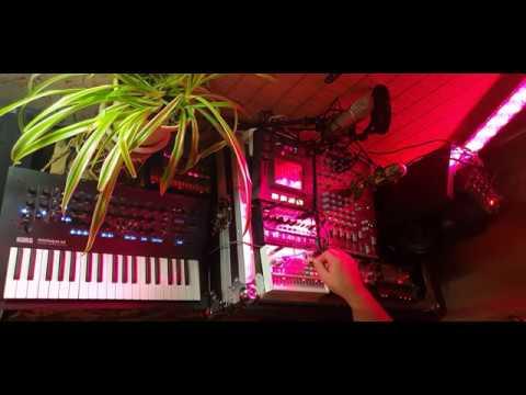 Dj Wadada - korg acid session / 12 01 2020
