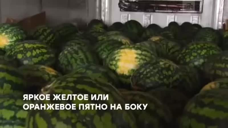 3 августа Всемирный день арбуза