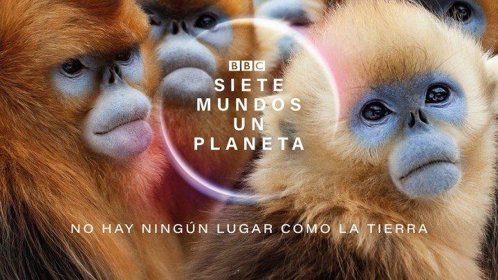 BBC. Семь миров, одна планета 2019 г. - Научно-познавательный - 1 серия