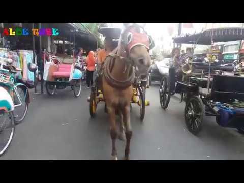 Lagu Anak Naik Delman Istimewa Lagu Anak Indonesia Terpopuler