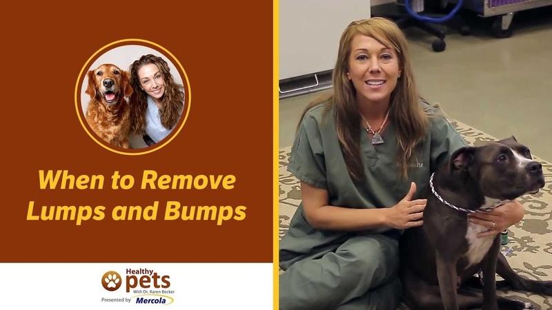 Когда надо удалять припухлости и шишки When to Remove Lumps and Bumps