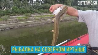 Начали с ЩУК, закончили СУДАКАМИ! Рыбалка на СЕВЕРНОМ ИРТЫШЕ!