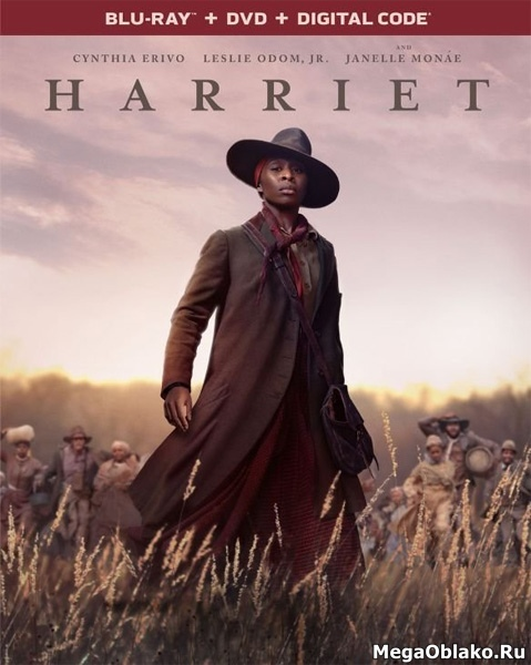 Гарриет / Harriet (2019/BDRip/HDRip)