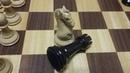 Шахматы Конь ловит ладью Правильные ходы против французской защиты Обучение шахматам