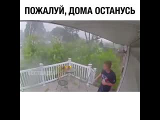 Погода: А ну брысь домой