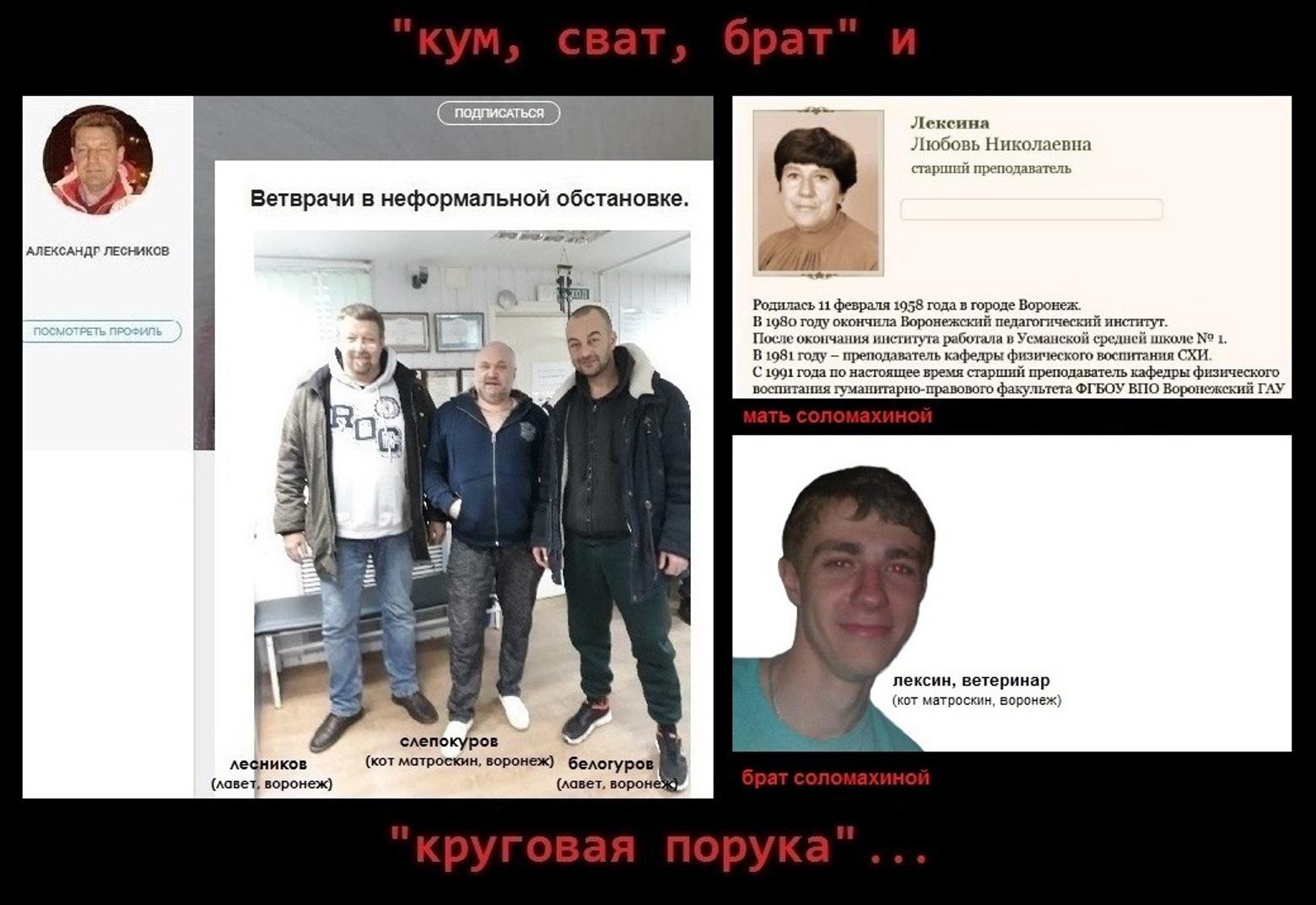 18+ ВЕТЕРИНАРА-ОФТАЛЬМОЛОГА Л.СОЛОМАХИНУ (г.ВОРОНЕЖ)— ОБХОДИТЬ СТОРОНОЙ!!!, изображение №6