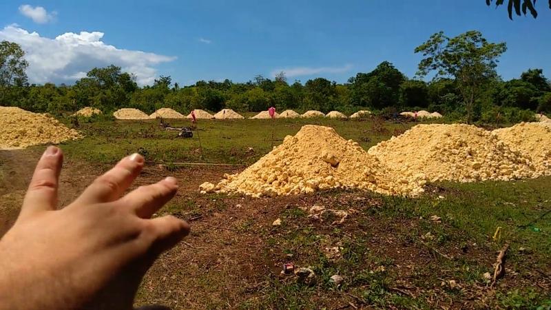 Алекс Себу Отличные участки в центре Панглао Жизнь на Филиппинах