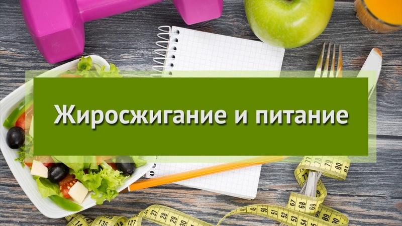 Жиросжигание и питание, фрагменты вебинара
