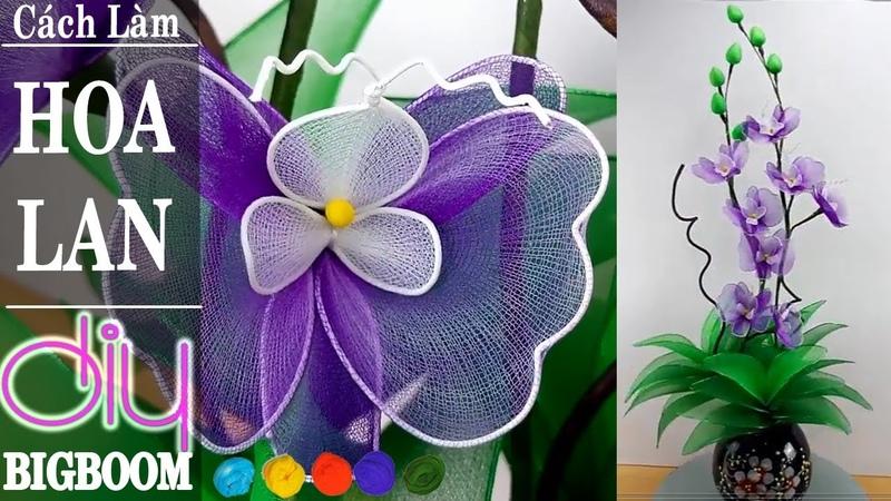 Hướng dẫn cách tự làm Hoa Lan tím bằng vải voan cực đẹp DBB VN