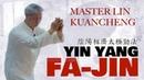 Yin Yang Fa Jin Master Lin Kuancheng 林冠澄 Season 3 Ep 5