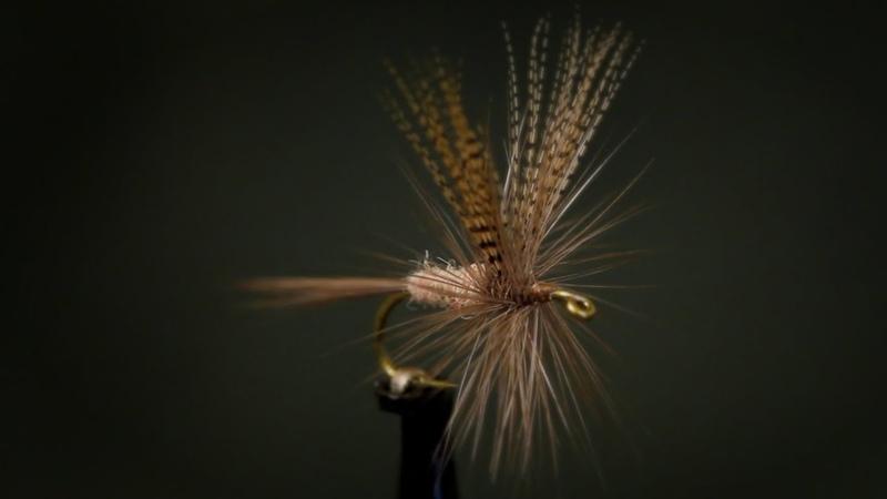 Catskill-Style Hendrickson Dry