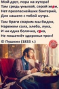 Александр Тихонов фотография #46