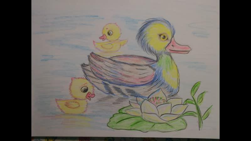 Как нарисовать утку с утятами
