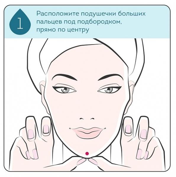 Массажные линии лица, изображение №2