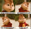Фотоальбом Александры Бадаевой