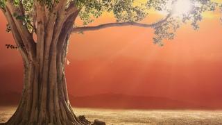 MAGICAL HEALING MANTRA  Prana Apana Sushumna Hari Meditation