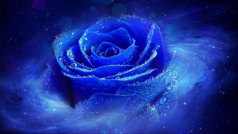 11 Роза Мира Книга 4 Структура Планеты Инфрафизика Глава 2 Миры Возмездия Чистилища Ады
