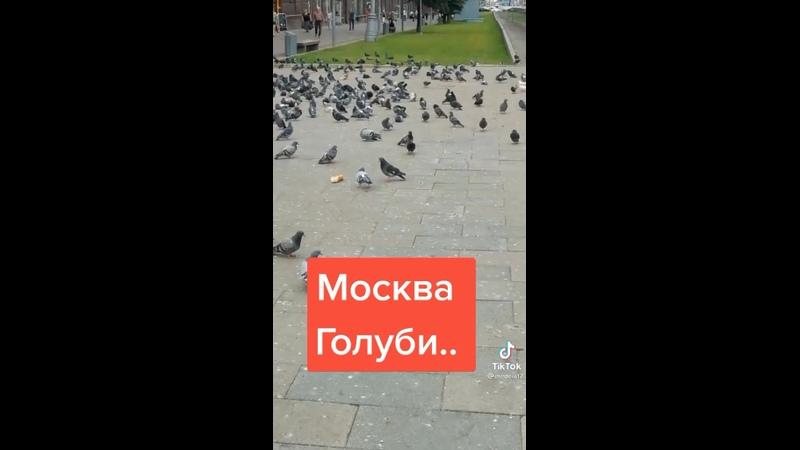 Видео от Анастасии Овечкиной