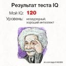 Черенова Татьяна   Гатчина   3