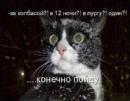Фотоальбом Алексея Петренко