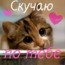 Фотоальбом Катерины Белолипецкой