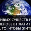 Роман Мельников