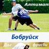 Алтимат и Дог-фрисби в Бобруйске
