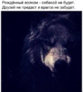 Личный фотоальбом Вани Пархонюка