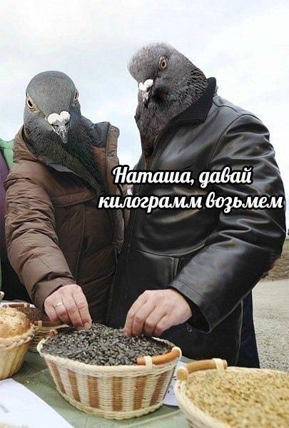 фото из альбома Дмитрия Ивахненко №3