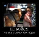 Фотоальбом Эмина Алиева