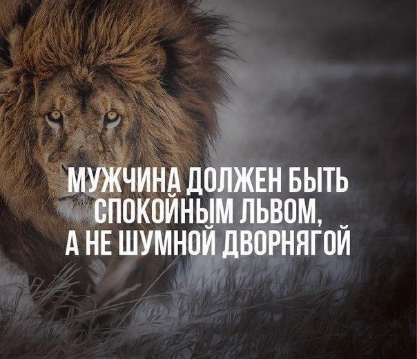 Нелли Чепиленко, 46 лет, Вологда, Россия