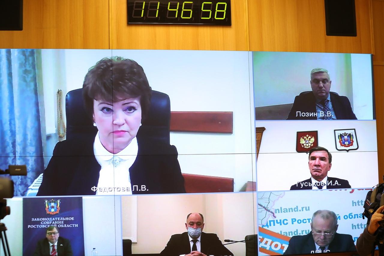 Донской Минфин отчитался о результатах контрольной деятельности за 2020 год