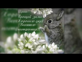 Первый день весны. Видео Елизаветы Степичевой