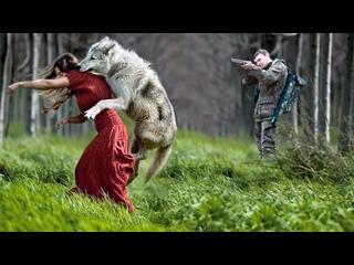 Причина, по которой эта волчица напала на девушку, заставит вас гордиться ей