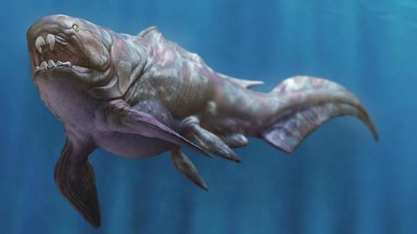 Дунклеостей. Дунклеостей был самой крупной из доисторических панцирных рыб плакодерм. Её голова и грудь были покрыты сочлененной бронированной пластиной. Вместо зубов, эти рыбы обладали двумя