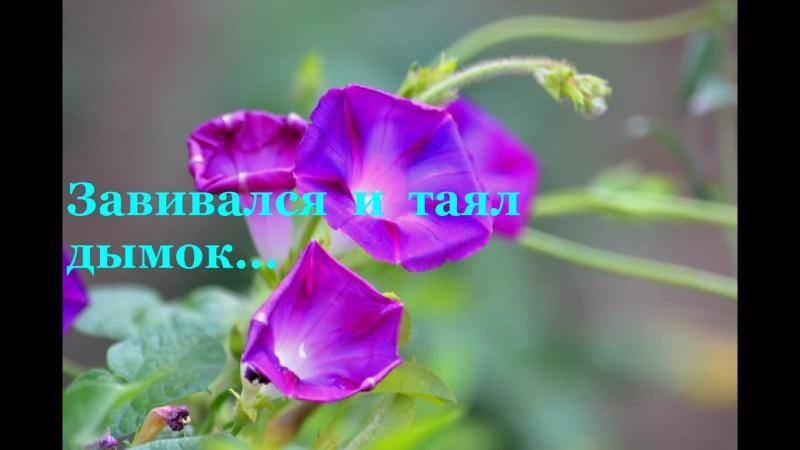 124).  600  Завивался  и  таял  табачный  дымок...  ст.  Владимир  Полуничев