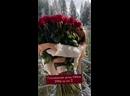 Голландские розы 100см 280р за шт!