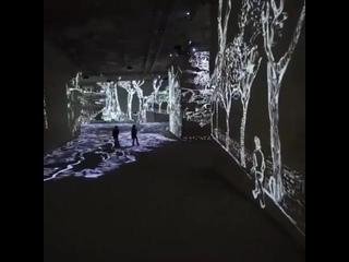 """Восхитительная выставка Ван Гога """"Звездная ночь"""" на Фестивале света в Амстердаме."""