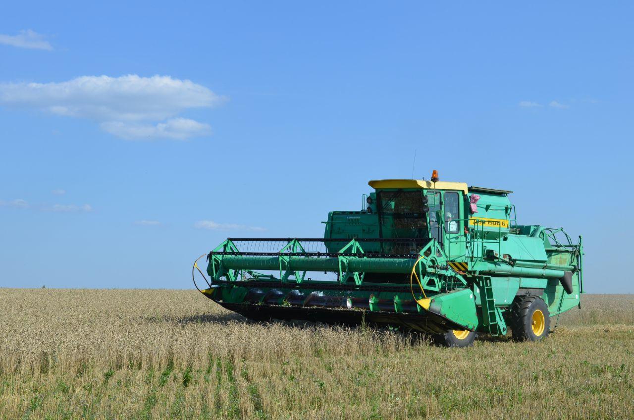 В Петровском районе озимые зерновые культуры скошены на площади 35 100 га