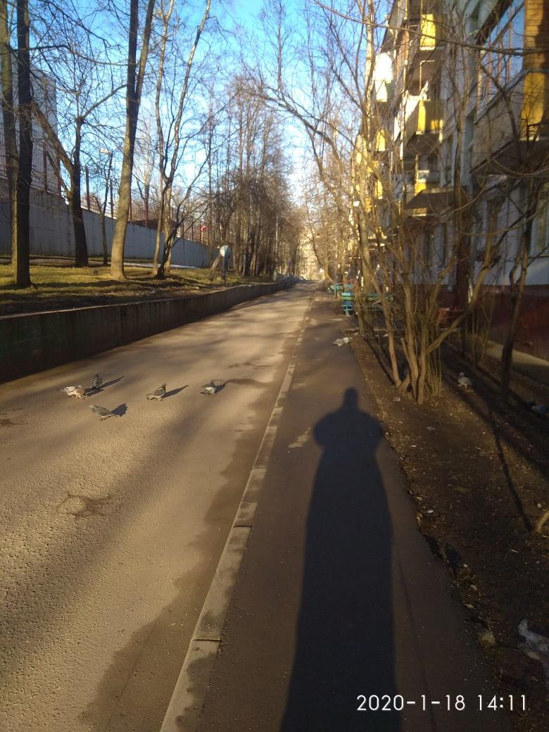 фото из альбома Евгении Новосельцевой №9