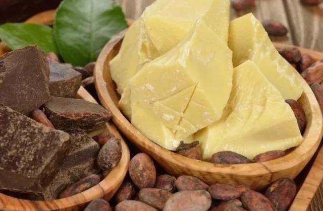 Что такое какао-масло? Польза, вред, рецепты  использования в косметических и медицинских целях
