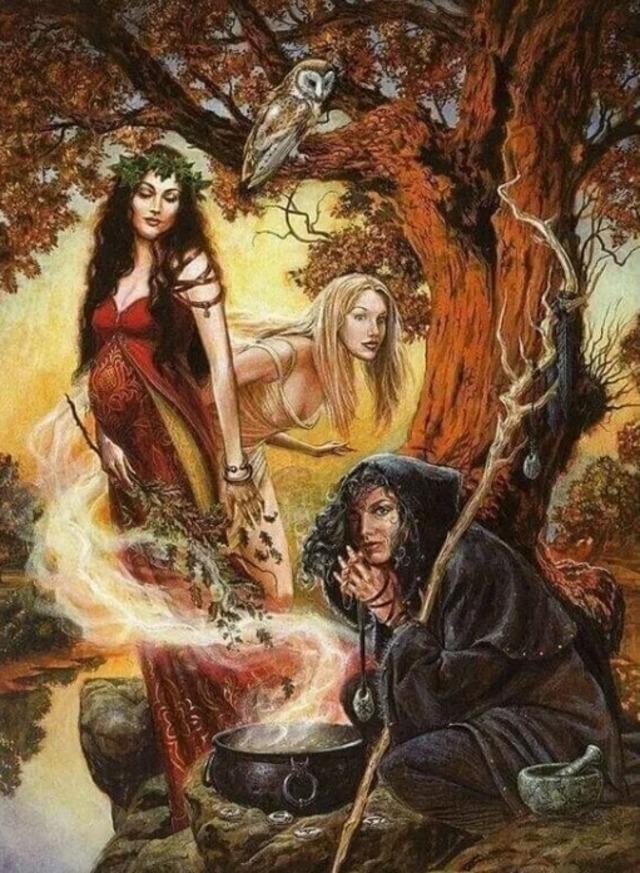 Ведьма - кто она такая?, Интересное о ведьмах,