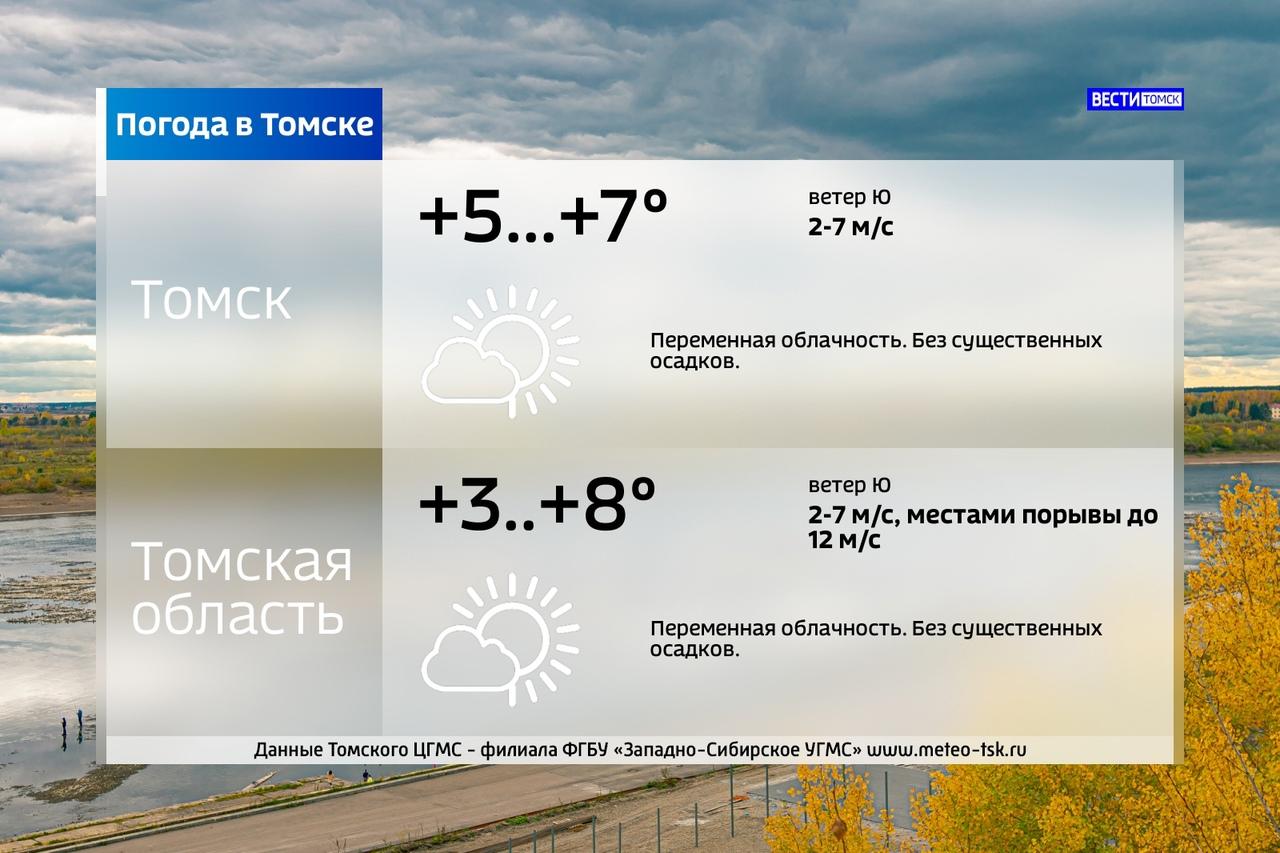 Прогноз погоды на завтра